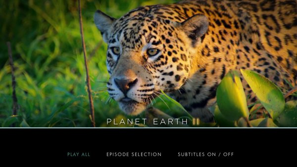planet earth 2 torrent